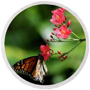 Butterfly And Blossom Round Beach Towel