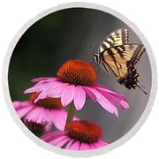 Butterfly And Coneflower Round Beach Towel by Byron Varvarigos