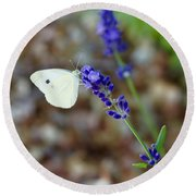 Butterfly And Lavender Round Beach Towel