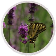 Butterfly Balancing Act Round Beach Towel