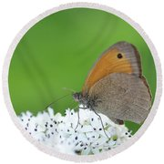 Round Beach Towel featuring the photograph Butterfly by Bess Hamiti