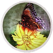 Butterfly Round Beach Towel by Bonnie Willis