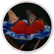 Round Beach Towel featuring the photograph Butterfly Fruit by Richard Bryce and Family