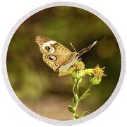 Butterfly In Bokeh Round Beach Towel by Steven Parker