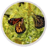 Butterfly In Fall  Round Beach Towel