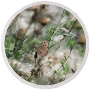 Butterfly In Puffy Seed Heads Round Beach Towel