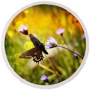 Butterfly In The Spring Round Beach Towel