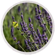 Butterfly N Lavender Round Beach Towel