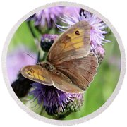 Butterfly Photograph  Round Beach Towel