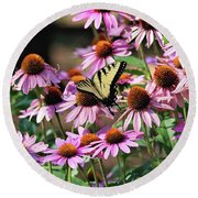 Butterfly On Coneflowers Round Beach Towel