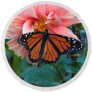 Butterfly On Dahlia Round Beach Towel