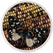 Butterfly On Indian Corn Round Beach Towel