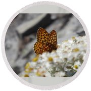 Butterfly On Table Mountain Round Beach Towel