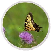 Round Beach Towel featuring the photograph Butterfly On Thistle by Sandy Keeton