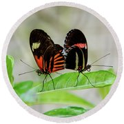 Butterfly Pair Round Beach Towel