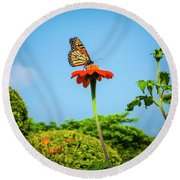 Butterfly Perch Round Beach Towel