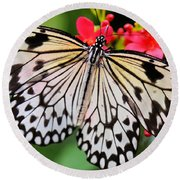 Butterfly Spectacular Round Beach Towel