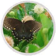 Butterfly Spicebush  Round Beach Towel