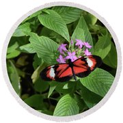 Butterfly World 2 Round Beach Towel