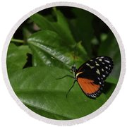 Butterfly World Round Beach Towel