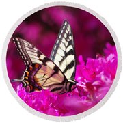 Butterfly1 Round Beach Towel