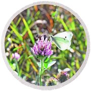 Butterfly2 Round Beach Towel