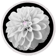 Bw Dahlia And Touch Of Pink Round Beach Towel