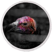 Bw Vulture - Wildlife Round Beach Towel