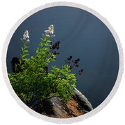 By The Edge Round Beach Towel by Peter Scott