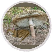 By The Shade Of The Old Mushroom Tree Round Beach Towel
