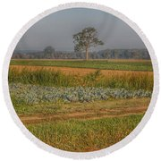 2009 - Cabbage And Pumpkin Patch Round Beach Towel
