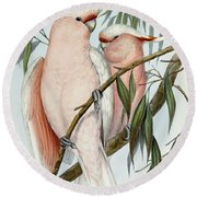 Cacatua Leadbeateri Round Beach Towel by John Gould
