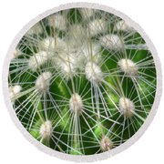 Round Beach Towel featuring the photograph Cactus 1 by Jim and Emily Bush