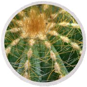 Round Beach Towel featuring the photograph Cactus 2 by Jim and Emily Bush