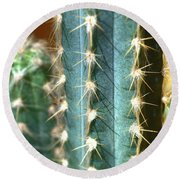 Round Beach Towel featuring the photograph Cactus 3 by Jim and Emily Bush
