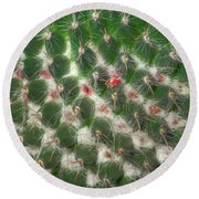 Round Beach Towel featuring the photograph Cactus 5 by Jim and Emily Bush