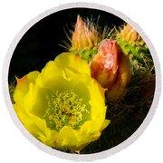 Cactus Blossom  Round Beach Towel
