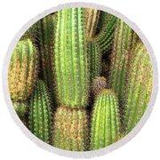 Cactus City Round Beach Towel