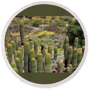 Round Beach Towel featuring the photograph Cactus Field In San Diego by Jasna Gopic