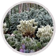 Cactus Field Round Beach Towel