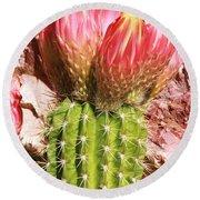 Cactus Flowe Bee Round Beach Towel