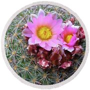 Round Beach Towel featuring the painting Cactus Flower  by Alan Johnson