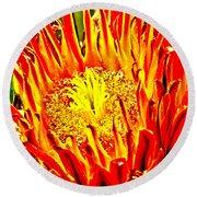 Cactus Flower Round Beach Towel