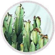 Cactus Love Round Beach Towel