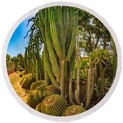 Cactus Promenade Round Beach Towel