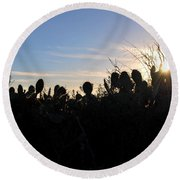 Round Beach Towel featuring the photograph Cactus Silhouettes by Matt Harang