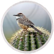 Cactus Wren On Saguaro Round Beach Towel