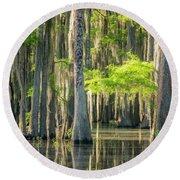 Caddo Swamp 1 Round Beach Towel