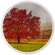 Round Beach Towel featuring the photograph Cades Tree After The Rain by Geraldine DeBoer