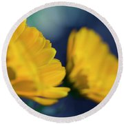 Round Beach Towel featuring the photograph Calendula Flowers by Sharon Mau
